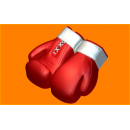 Форма для мыла Перчатки бокс 482