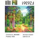 Алмазная живопись FZ6361 40*50