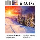 Алмазная живопись 40*50 ZX10318