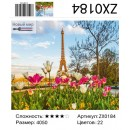 Алмазная живопись ZX0184 40*50