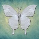 """Молд """"Бабочка 9"""" (M) ARTMD1223"""