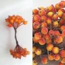 Ягоды в сахаре красно-оранжевый 20 шт.