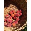 Ягоды гранат в сахаре  большие красно-оранжевый 20 шт.